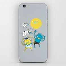 It's a nice day to play! iPhone & iPod Skin