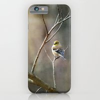Morning Goldfinch iPhone 6 Slim Case