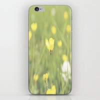 Yellow Flowers In A Fiel… iPhone & iPod Skin