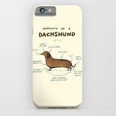 Anatomy of a Dachshund iPhone 6 Slim Case