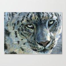Snow-Leopard glance 810 Canvas Print