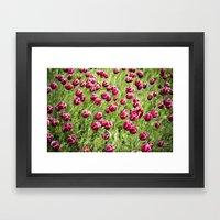 Tulips will remember  Framed Art Print