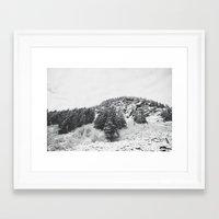 MONTANA BEAUTY In The BL… Framed Art Print