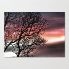 Tree of sunset Canvas Print