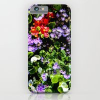 Flower Cluster iPhone 6 Slim Case