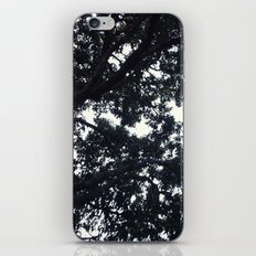 Under the trees iPhone & iPod Skin