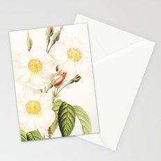 III. Vintage Flowers Botanical Print by Pierre-Joseph Redouté - Rosa Damascena Subalba Stationery Cards