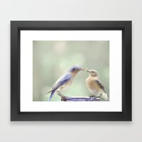 Spring Kiss Framed Art Print