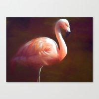 Flamingo dream Canvas Print