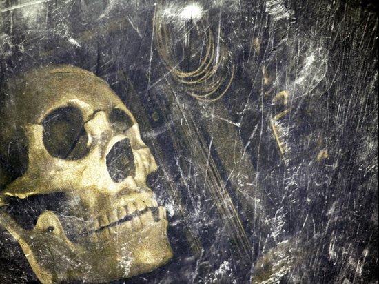 OldSkull Art Print