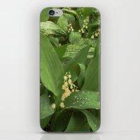 Old Lilies iPhone & iPod Skin