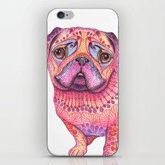 Pugberry iPhone & iPod Skin