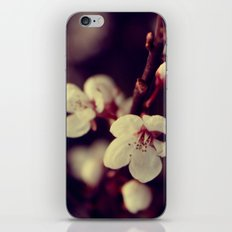 Deep Blossom iPhone & iPod Skin