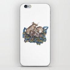 Mice and skulls iPhone & iPod Skin