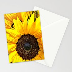 Petals of Sunshine Stationery Cards