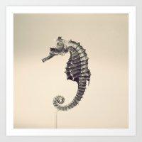 Water Pony Art Print
