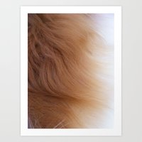 Fur Art Print