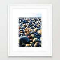 Lonley Barnacle Framed Art Print