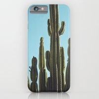 At the Cactus Garden iPhone 6 Slim Case