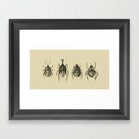 Basic Beatle Morphology Framed Art Print