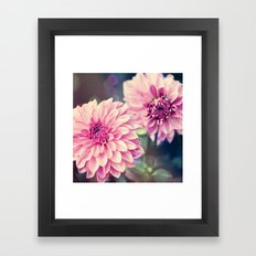 Pink Dahlia bokeh effect Framed Art Print
