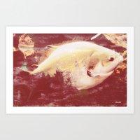 A big fish... literally Art Print