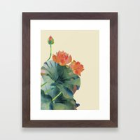 Lotus Bloom Framed Art Print