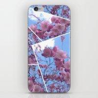 Cherry Tree Blossom iPhone & iPod Skin