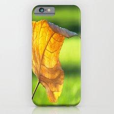 Fallen iPhone 6s Slim Case