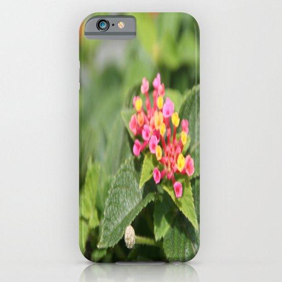 tiny flowers iPhone & iPod Case