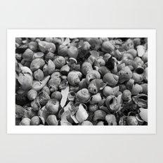 Shell pattern black decoration Art Print