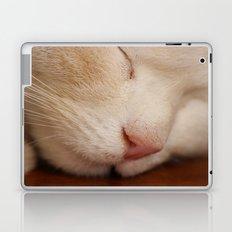 Sleeping Cat Laptop & iPad Skin