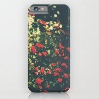 Summer Roses Series  - I -   iPhone 6 Slim Case