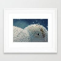 Polar Freeze Framed Art Print