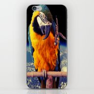 iPhone & iPod Skin featuring Parrot by Cs025