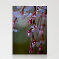Cherry Blossoms 2  Stationery Cards