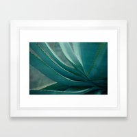 blue agave Framed Art Print