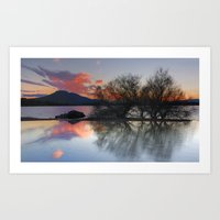 Trees In The Water At Th… Art Print