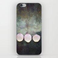 Three Rose Petals iPhone & iPod Skin