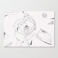 Camellia - white Canvas Print