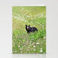Pretty Bear Stationery Cards