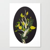 Snake - Green Canvas Print