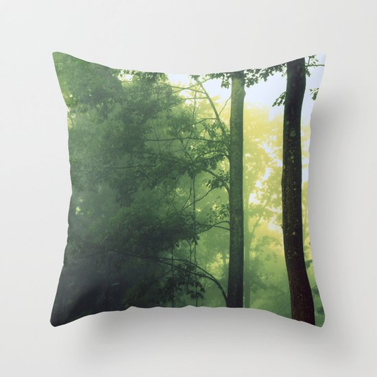 Is This The Place From My Dreams? Throw Pillow