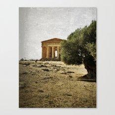 Mediterranean roots Canvas Print