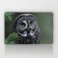 GREAT GREY OWL FACE Laptop & iPad Skin