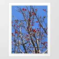 Blossoms On A Barren Tre… Art Print