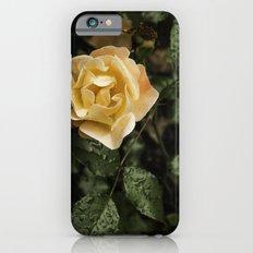 Rose 1 iPhone 6s Slim Case