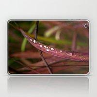 All the Pretty Drops Laptop & iPad Skin