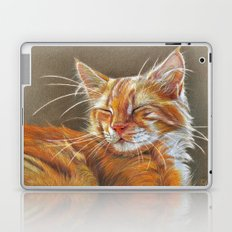 Sleeping Ginger Kitten CC12-005 Laptop & iPad Skin