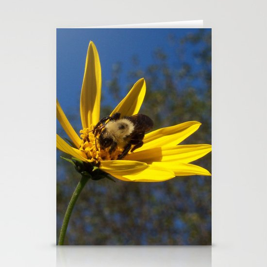 Bee Stationery Card